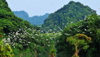 Ninh Binh Short Break 2 Days