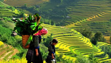 Sapa Trekking & Homestay Tour  4 Days